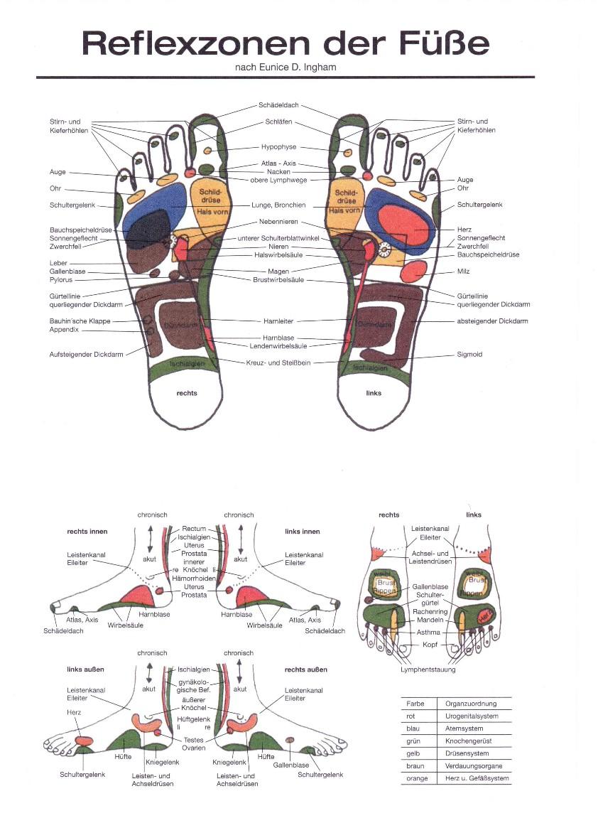 Reflexzonen der Füße
